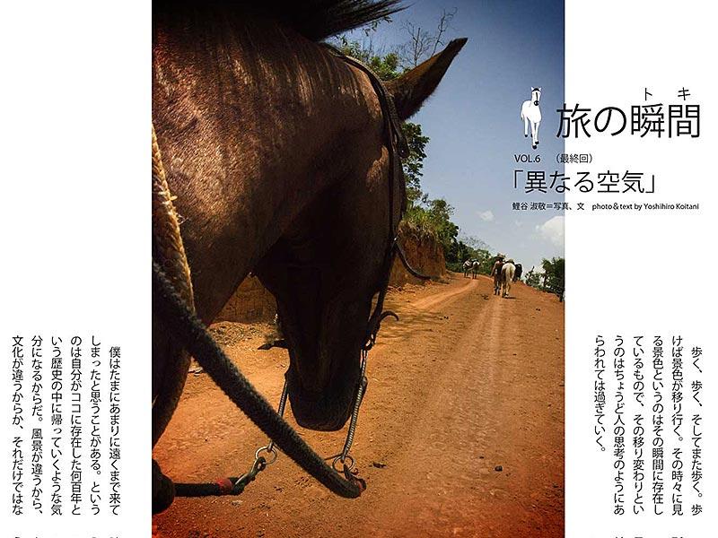 Horse Caravan Essay